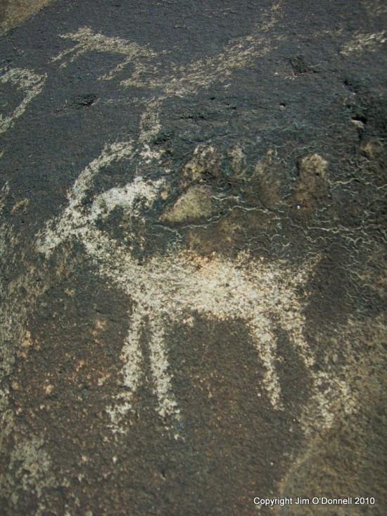 bighorn petroglph