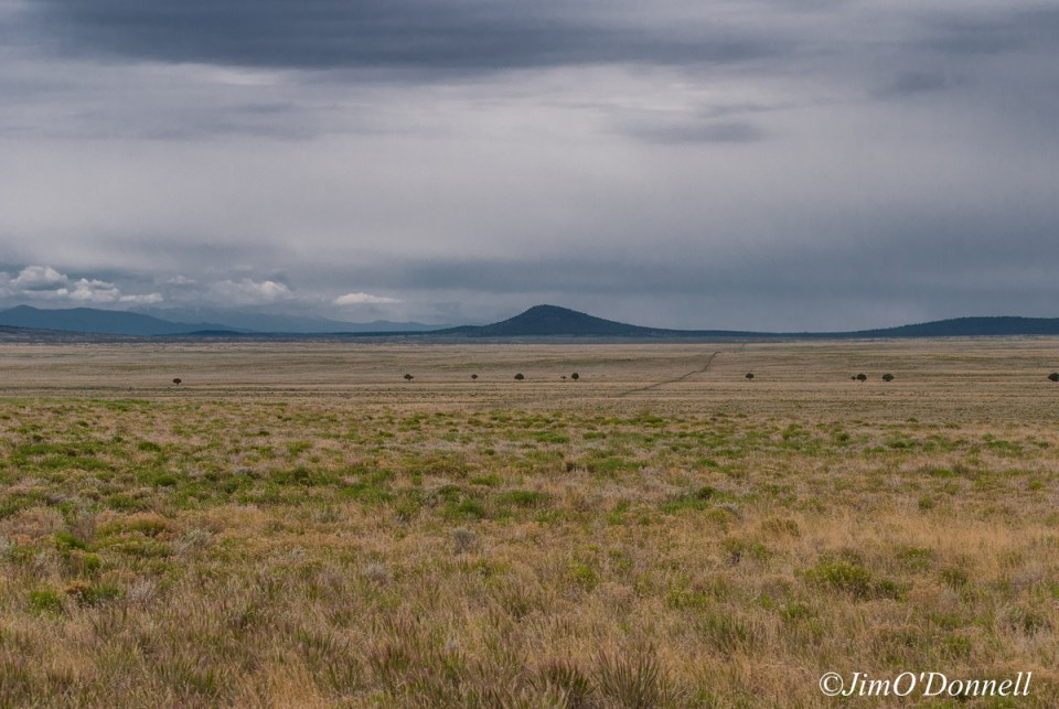 ODonnell_New_Mexico_RGDN_West_Side_Wilderness-030