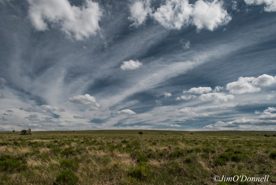 ODonnell_New_Mexico_RGDN_West_Side_Wilderness-161