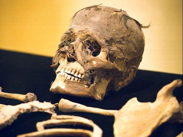 Descubren momia peruana con tatuajes en el Parque de las Leyendas