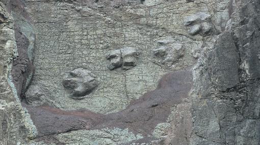 Hallazgo Paleontológico: Dinosaurios y tiburones habitaron en el Parque Nacional Huascarán, Huaraz, Perú