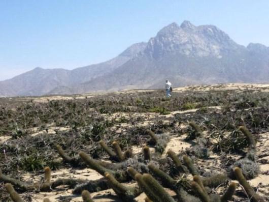 cerro-campana-caminata-1