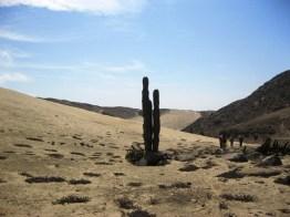 cerro-campana-caminata-3