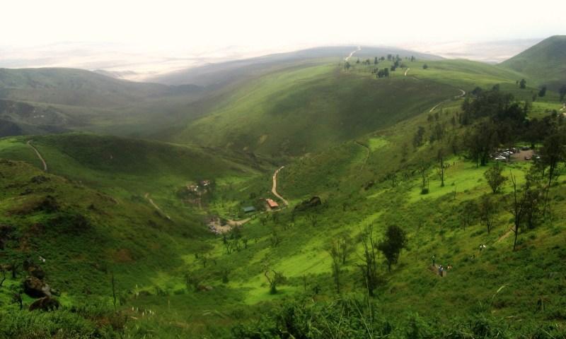 Lomas de Lachay: A paradise not far from Lima