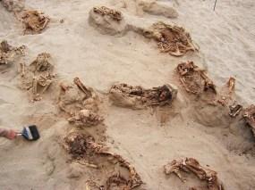 En el transcurso de un día, arqueólogos descubrieron los restos de más de una docena de niños preservados en arena seca durante más de 500 años. La mayoría de las víctimas del ritual tenían entre 8 y 12 años cuando murieron. FOTOGRAFÍA DE GABRIEL PRIETO