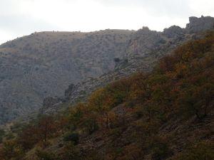 Colores de otoño bajo la Carluca