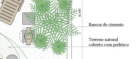 Uso de fontes tipográficas em projetos - Constantia