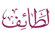 الفشل - أ.عماد المصري