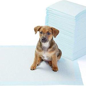 AmazonBasics  Tappetini igienici assorbenti per animali domestici misura standard 100 pz