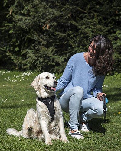 Happilax  Guinzaglio per cani imbottito catarifrangente e resistente in nylon nero 120 m