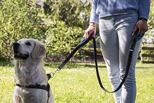 Happilax Guinzaglio per Cani Imbottito con Doppia Maniglia in Nero 150 m