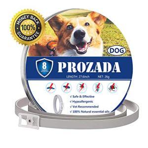 PROZADALAN Collare Antipulci Cane 8 Mesi Prevenzione Pulci e Zecche  con Estratti di Oli Essenziali  Ipoallergenico Taglia Unica per Tutti i Cani 70cm