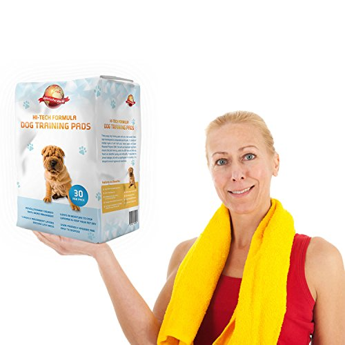 Tappetini Assorbenti Per Addestramento Cuccioli  30  60 cm x 60 cm Nuove Dimensioni Super Assorbenti