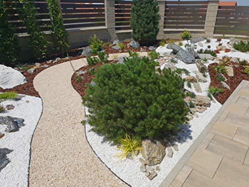 AMISPOL 12 m Giardino bellissa plastica 1254 mm  Bordo Flessibile in plastica per Prato  Bordatura per aiuole Bordo da Giardino in plastica Giardino Flessibile da Giardino Idee da Giardino