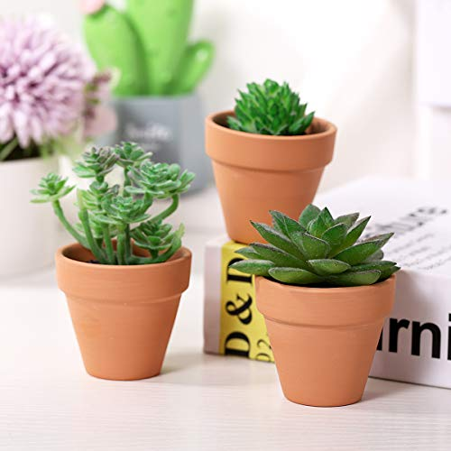 Bestomz 10mini vasi in terracotta per fiori cactus deliziosi vasi da vivaio ideali per piante artigianato bomboniere As Shown 18x16inch