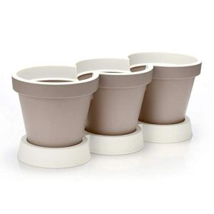 COMFOUR Vaso per erbe in 3 pezzi con piattino  vaso per fiori ed erbe  vaso decorativo per giardino balcone e appartamento 1 pezzo  con sabbia da sottobicchiere