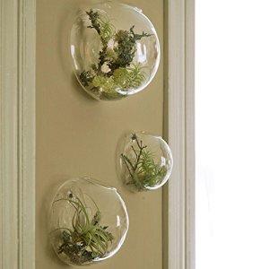 Set di 3 vasi in vetro a parete terrari a parete a bolle terrari in vetro soffiato fioriere per interni portatori di piante daria fioriere per piante grasse senza piante