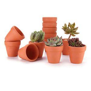 T4U Vaso Terracotta in Argilla Rosso 8CM Argilla Set di 12 Vaso per Piante in Miniatura Fioriera per Piante Sospese Cactus Erbe per Matrimonio Compleanno Casa e Ufficio Decorativo