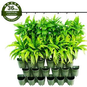 Worth Garden Self Watering Vertical 36 fioriere Tasche in Confezione da 12 Pezzi con Sistema di gocciolamento