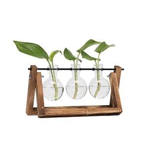 Hyindoor Vaso a bulbo con supporto in legno vintage per piante idroponiche Vaso da fiori in vetro per la decorazione domestica