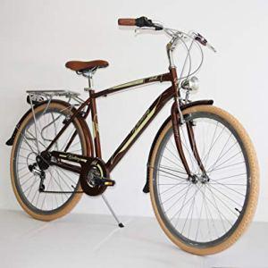 Bicicletta Vintage