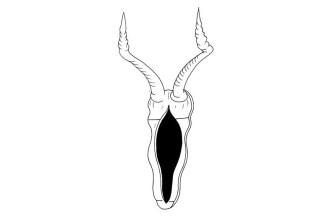 ctrlzak-object
