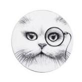 rory_dobner_cats_05