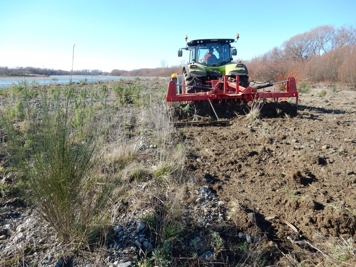 The Mark III tractor mounted ripper uprooting weeds on the Ashley-Rakahuri riverbed