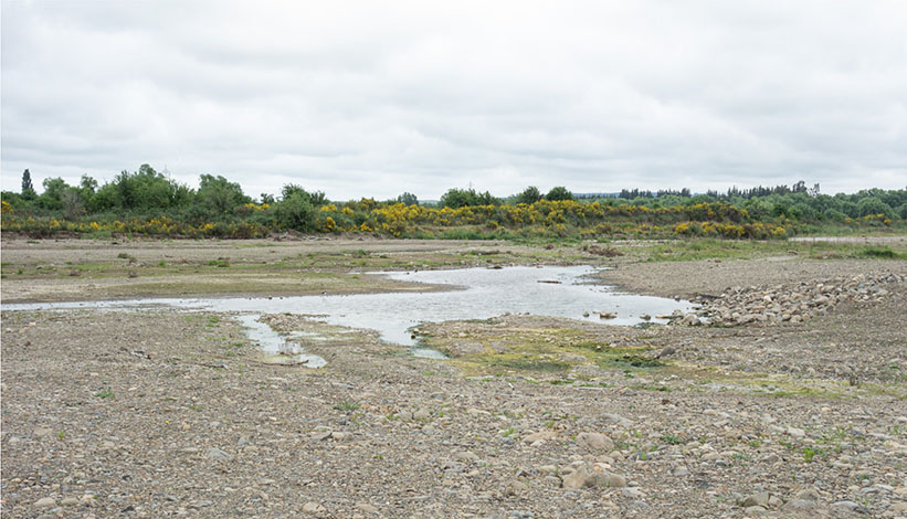 Shallow ponds from gravel extraction, Grey River.  The title image are shallow ponds, gravel extraction area west of Yaxleys Road.