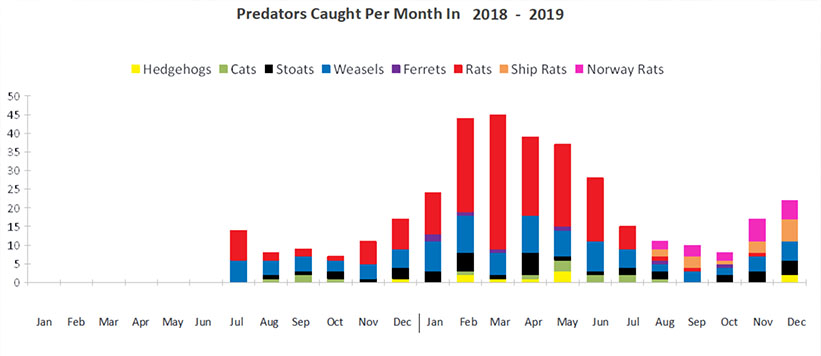 predators per month