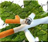 hukum-rokok