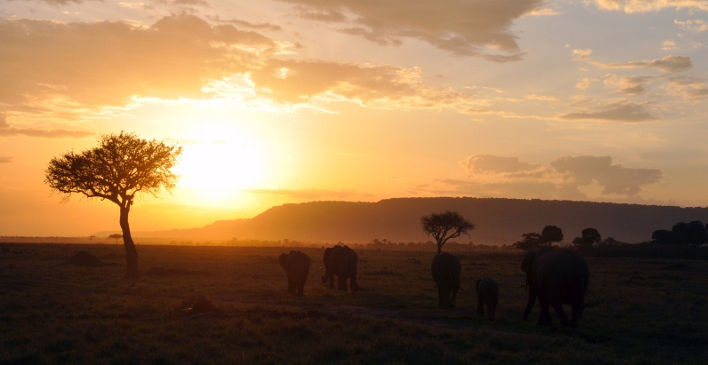 sunset Kenya Africa