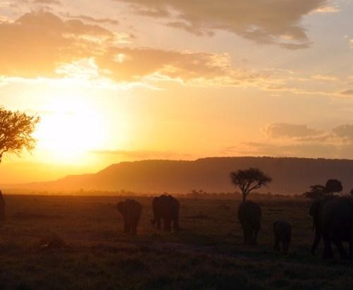 sunset Kenya Africa