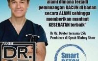 Detoksifikasi Tubuh Dengan SMART DETOX