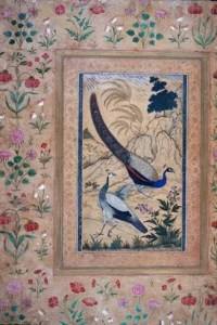 illustration of peafowl bordered by florals painted by Ustad Mansur