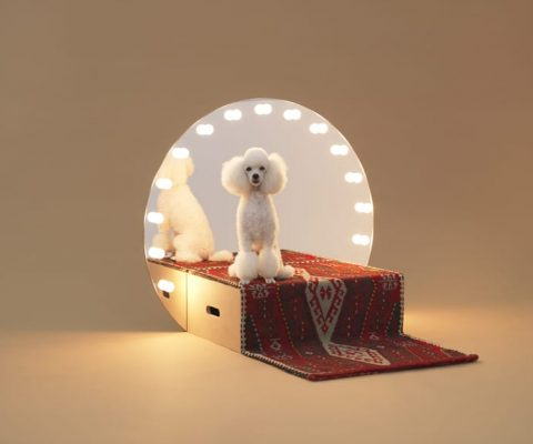Love dogs and design? Then Architecture for Dogs is a must-see exhibition hitting London this September
