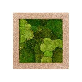 Tableau de mousse stabilisée Naturecast