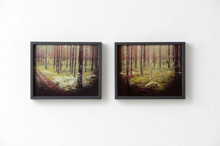 Vincenzo Castella: Pirkanmaa Finland #85 – #86, 2007/2018, Ed. di 5 - type c-print, 20x25cm cad. | photo Michele Alberto Sereni | courtesy Studio la Città – Verona