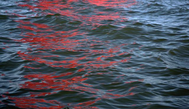 ArtVerona 2020 - Digital White: Melissa McGill: Riflessi (Red Regatta - 15 September 2019) - 1, 2019 | Mazzoleni, London-Torino