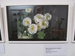 27. Art Senses näitus Pärnus