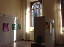 23 sala espositiva Art Senses