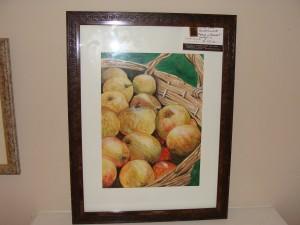 Apples watercolour