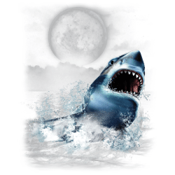 SHARK WILDERNESS