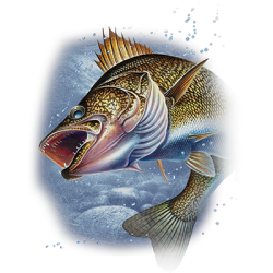 ACTION WALLEYE