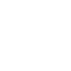 BERN IT DOWN