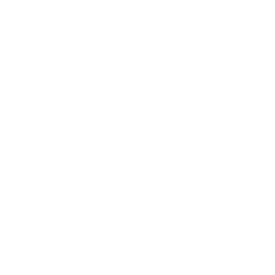 OFFICIAL BIGFOOT SEARCH TEAM
