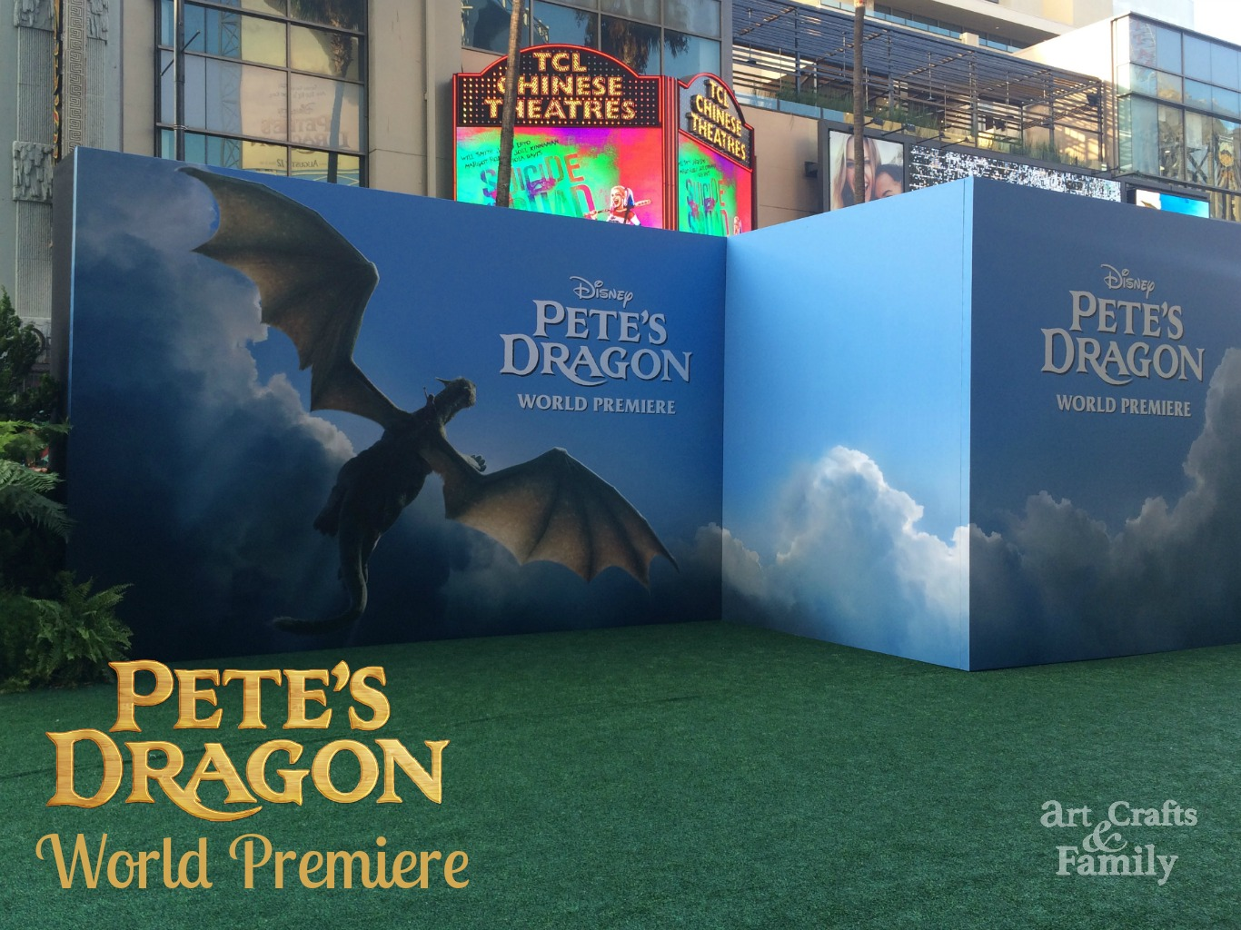 Pete's Dragon Red Carpet Premiere in Los Angeles!