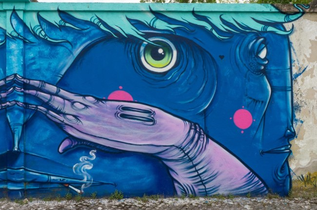 Muro azul (8)