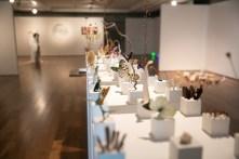 Alice Padovani, Solid, 2018, installazione, gesso e inclusioni di materia organica, dimensioni ambientali, courtesy Le Dame Art Gallery