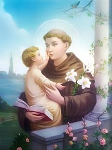 Vida y Obra de San Antonio de Padua